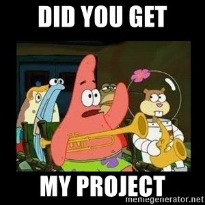 Patrick Star Instrument - DID YOU GET MY PROJECT