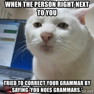 Serious Cat - When the person right next to you tried to correct your grammar by saying 'You noes grammars.'