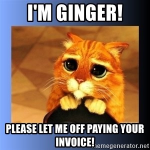 puss in boots eyes 2 - I'm Ginger! Please let me off paying your invoice!