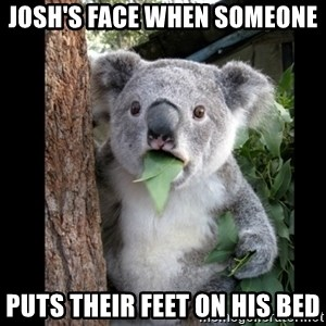 Koala can't believe it - Josh's face when someone  Puts their feet on his bed