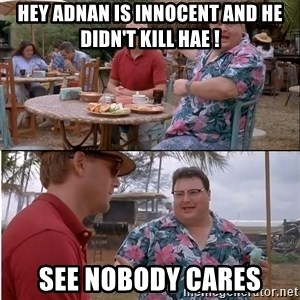 See? Nobody Cares - hey adnan is innocent and he didn't kill hae ! see nobody cares
