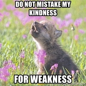 Baby Insanity Wolf - Do not mistake my kindness For weakness