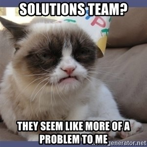 Birthday Grumpy Cat - Solutions team? they seem like more of a problem to me