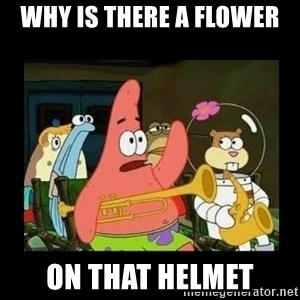 Patrick Star Instrument - why is there a flower on that helmet