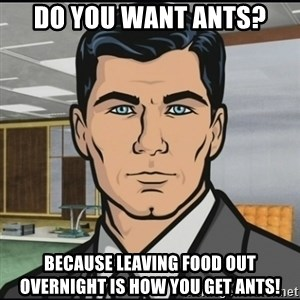 Archer - do you want ants? Because leaving food out overnight is how you get ants!