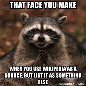evil raccoon - that face you make when you use wikipedia as a source, but list it as something else