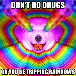 Final Advice Dog - Don't do drugs Or you be tripping rainbows