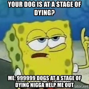 Tough Spongebob - your dog is at a stage of dying? me: 999999 dogs at a stage of dying nigga help me out