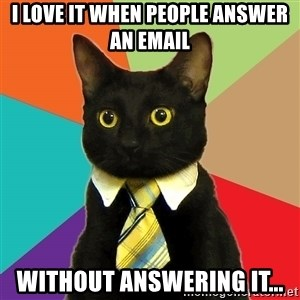 Business Cat - I love it when people answer an email without answering it...
