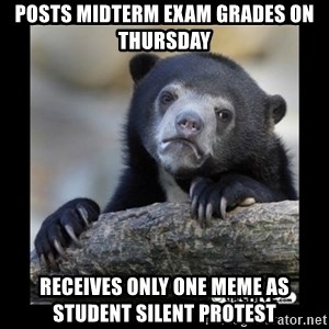 sad bear - posts midterm exam grades on thursday receives only one meme as student silent protest