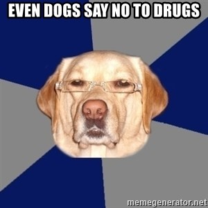 Racist Dog - even dogs say no to drugs