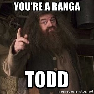 Hagrid - You're a ranga Todd