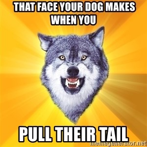 Courage Wolf - that face your dog makes when you  pull their tail