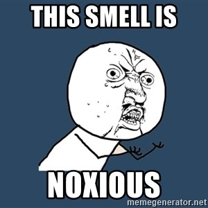 Y U No - This smell is  noxious