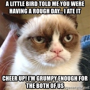 Grumpy Cat 2 - A little bird told me you were having a rough day... I ATE IT Cheer up! i'm grumpy enough for the both of us