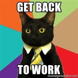 Business Cat - GET BACK TO WORK