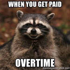 evil raccoon - when you get paid overtime