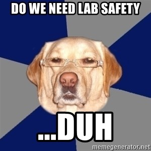 Racist Dog - do we need lab safety ...duh