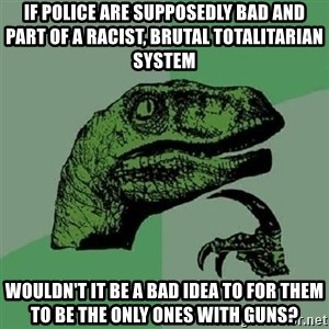 Philosoraptor - If police are supposedly bad and part of a racist, brutal totalitarian system Wouldn't it be a bad idea to for them to be the only ones with guns?