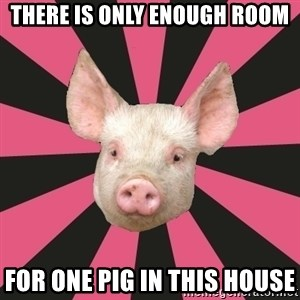 Pink Floyd Fan Pig - there is only enough room for one pig in this house