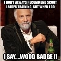 I don't always guy meme - I don't always recommend scout leader training, but when I do I say....Wood Badge !!