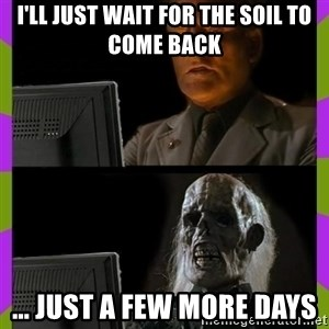ill just wait here - I'll just wait for the soil to come back ... just a few more days