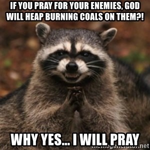 evil raccoon - If you pray for your enemies, God will heap burning coals on them?! Why Yes... I will Pray