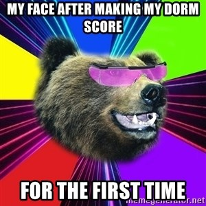 Party Bear - My face after making my dorm score for the first time