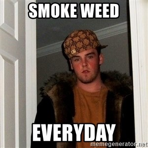 Scumbag Steve - Smoke weed Everyday