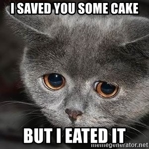 sad cat - I saved you some cake But I eated It
