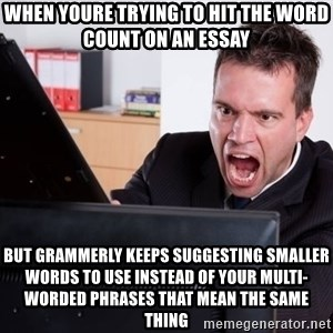 Angry Computer User - when youre trying to hit the word count on an essay but grammerly keeps suggesting smaller words to use instead of your multi-worded phrases that mean the same thing