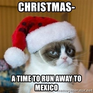 Grumpy Cat Santa Hat - Christmas- A time to run away to MEXICO