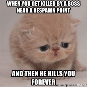 Super Sad Cat - When you get killed by a boss near a respawn point And then he kills you forever