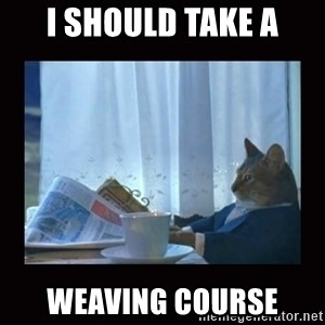 i should buy a boat cat - I should take a weaving course