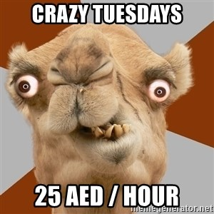 Crazy Camel lol - crazy tuesdays 25 AED / hour