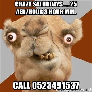 Crazy Camel lol - crazy saturdays......25 AED/HOUR 3 HOUR MIN. CALL 0523491537
