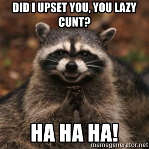 evil raccoon - Did I upset you, you lazy cunt? Ha ha ha!