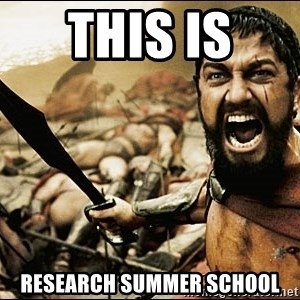 This Is Sparta Meme - this is  research summer school