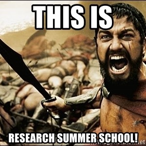 This Is Sparta Meme - this is  research summer school!