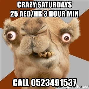 Crazy Camel lol - CRAZY SATURDAYS                                          25 AED/HR 3 HOUR MIN CALL 0523491537