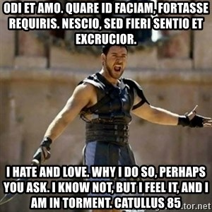 GLADIATOR - ODI et amo. quare id faciam, fortasse requiris. nescio, sed fieri sentio et excrucior. I HATE and love. Why I do so, perhaps you ask. I know not, but I feel it, and I am in torment. Catullus 85
