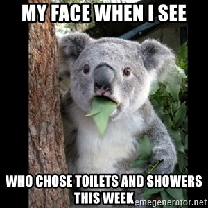 Koala can't believe it - My face when I see Who chose toilets and showers this week