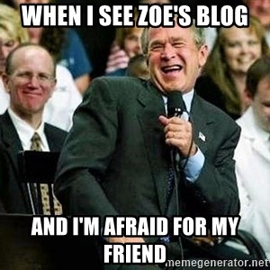 Laughing Bush - When i see Zoe's blog and i'm afraid for my friend