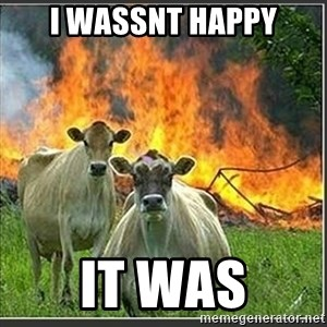 Evil Cows - i wassnt happy it was