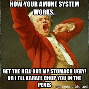 Joseph Ducreux - How your Amune system works.. Get the hell out my stomach ugly! Or I I'll karate chop you in the penis