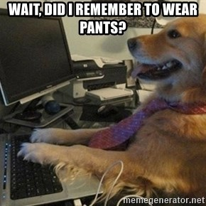 I have no idea what I'm doing - Dog with Tie - wait, did I remember to wear pants?