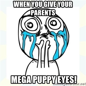 Cuteness overload - when you give your parents   MEGA PUPPY EYES!