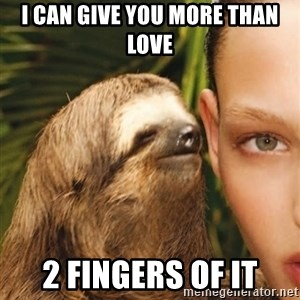 The Rape Sloth - i can give you more than love 2 fingers of it