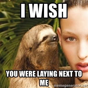 sexy sloth - I wish  You were laying next to me