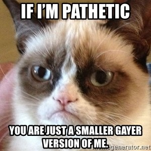 Angry Cat Meme - If I'm pathetic  You are just a smaller gayer version of me.